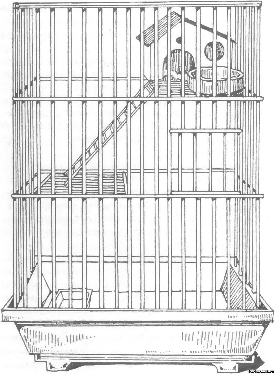 Клетка для попугая раскраска 16